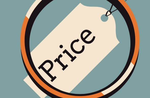 What is the important of Pricing in Marketing